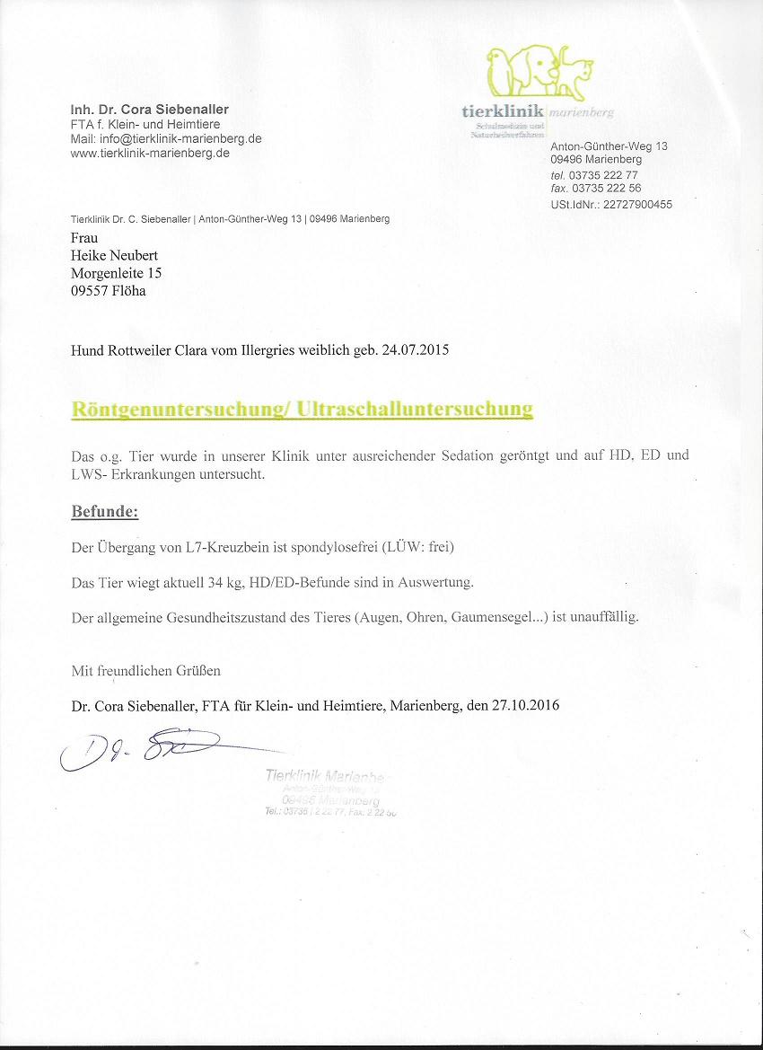 Ausgezeichnet Bild Lws Zeitgenössisch - Physiologie Von Menschlichen ...