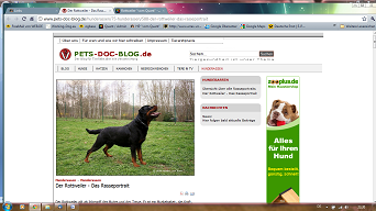 Homepage_pet_doc_blog_html_m7f699104